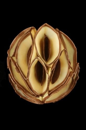 Helen Dannelly Amber Bronze Encaustic